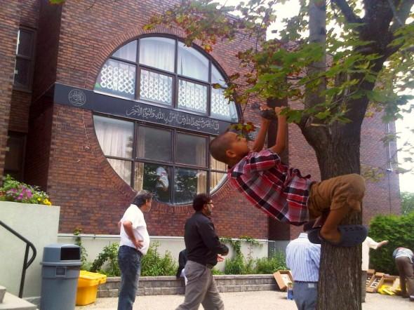 32 - Climbing a Tree after Jumah Prayers, Ottawa Main Mosque, Jumah Friday August 2 2013