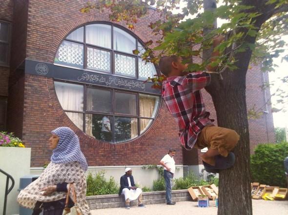 34 - Climbing a Tree after Jumah Prayers, Ottawa Main Mosque, Jumah Friday August 2 2013