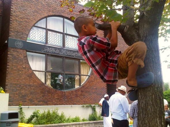 35 - Climbing a Tree after Jumah Prayers, Ottawa Main Mosque, Jumah Friday August 2 2013
